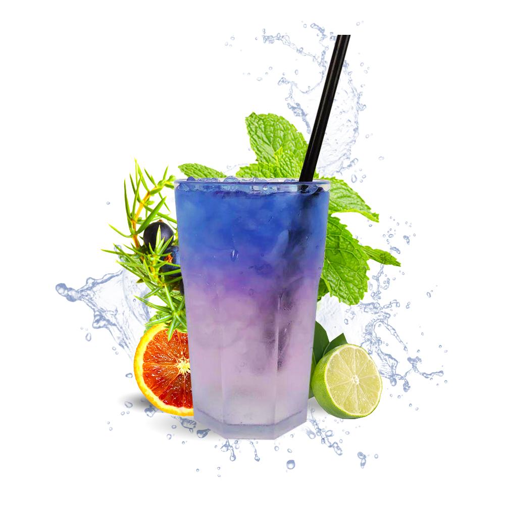 Stanleys Purple Lady Gin